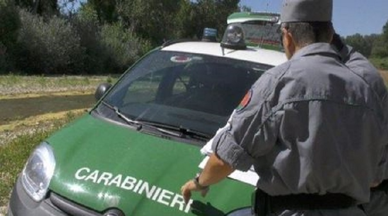 caseificio sequestrato acri