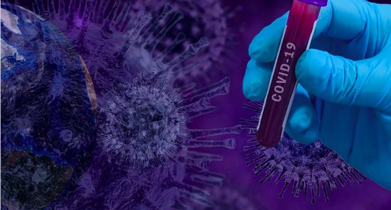 coronavirus saracena